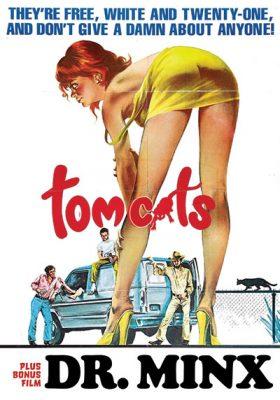 07_tomcats